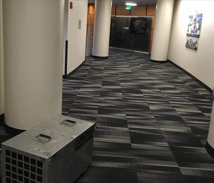 Commercial Restoring Your Bayonet Point Commercial Property After A Water Damage