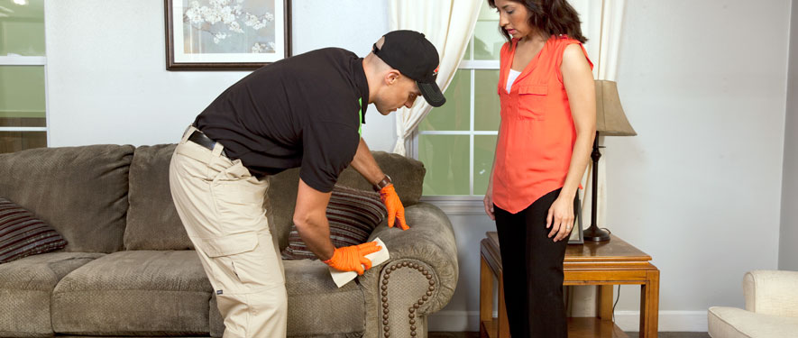 New Port Richey, FL carpet upholstery cleaning