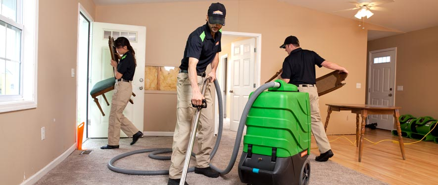 New Port Richey, FL cleaning services